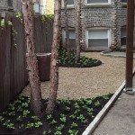 Project Highlight:  Courtyard Landscape Renovation